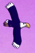Eagle, Bald (64 Zoo Lane)
