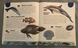 Ocean Life Dictionary (4).jpeg