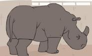 Smitha Minda Rhino