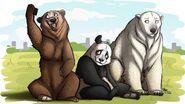 We Bare Realistic Bears (V2)