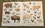 8- An Animal Alphabet (2)