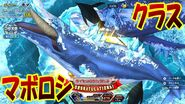Ace angler humpback whale