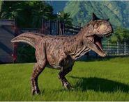 Carnotaurus sasteri