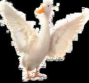 Ferdinand the Duck