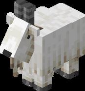 Goat BE1