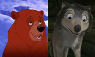 Humphrey and Kenai (Bear)