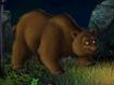 Jumpstart Bear