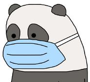 Panda Bear (corona)