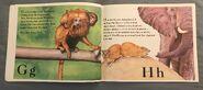The Furry Animal Alphabet Book (5)