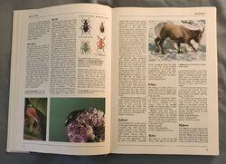 The Kingfisher Illustrated Encyclopedia of Animals (16).jpeg