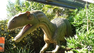 Chester Zoo Allosaurus