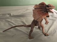 Fozzie the Frilled Lizard
