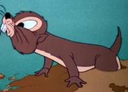Mm-1941-05-30-mole
