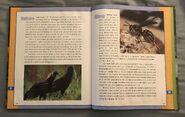 Scholastic Encyclopedia Of Animals (57)