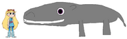 Star meets Common Hippopotamus
