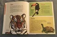 The Dictionary of Ordinary Extraordinary Animals (50)
