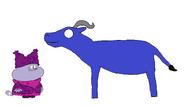 Chowder meets Cape Buffalo