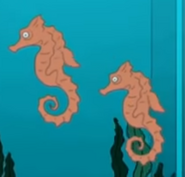 Family Guy Seahorses