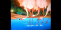 Happily Ever After Flamingos