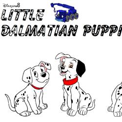 Little Dalmatian Puppies