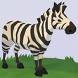 Plains Zebra WOZ