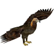 ZT Golden Eagle