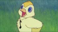 Cicci the bird smiling