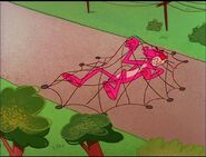 Pink panther trapped in the net