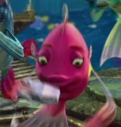 Shark Tale Royal Gramma