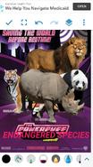 TPPESM2002 Poster