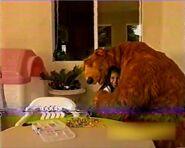 Amanda hugs Bear