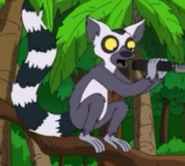 American Dad! Lemur