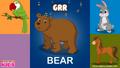 Ebubuzz Kids Bear