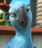 Jewel in Rio 2