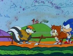 Sonic skunk.jpg