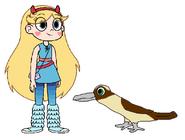 Star meets Kookaburra