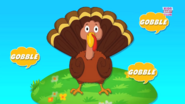 The Turkey Goes Gobble