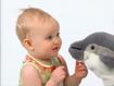 BEBN Dall's Porpoise