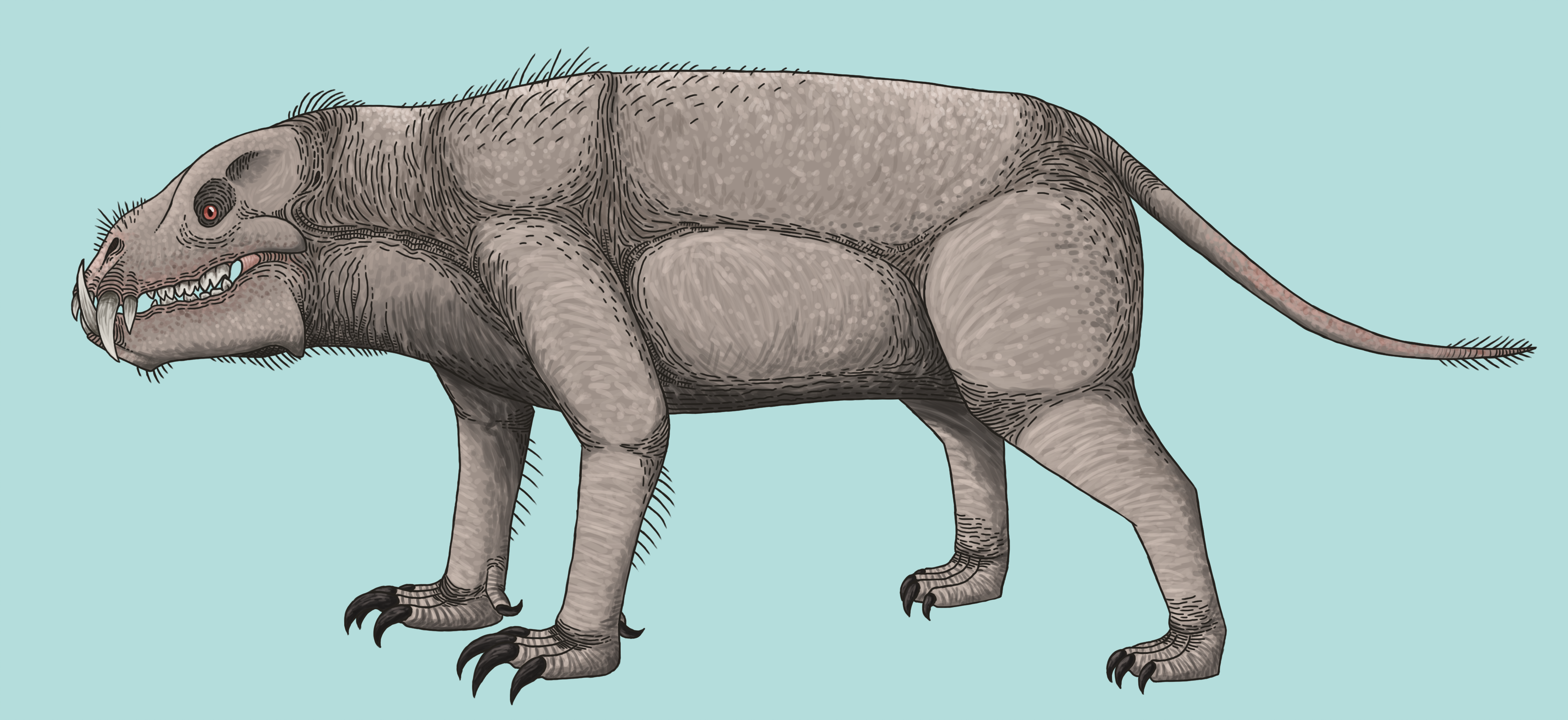 Indotherium Rex