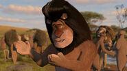 Madagascar2-disneyscreencaps.com-3153