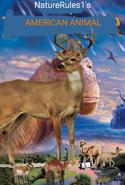 NR1 American Animal 2000 Poster