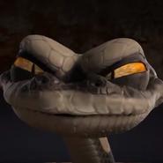 Python BT