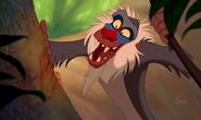 Rafiki the Mandrill (The Lion King)