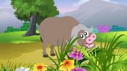 Appu Buffalo
