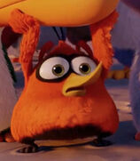 Bubbles in the Angry Birds Movie