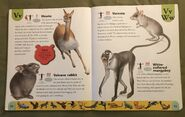 Endangered Animals Dictionary (24)