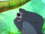 Jungle-cubs-volume02-baloo02