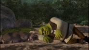 Shrek and Donkey Sleeping