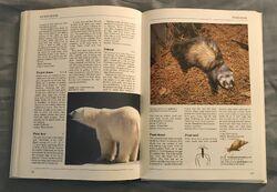 The Kingfisher Illustrated Encyclopedia of Animals (122).jpeg