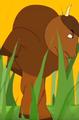 Funny-animals-2-bison